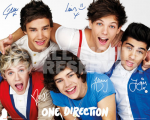 Poster One Direction colours 137bl. 40x50cm